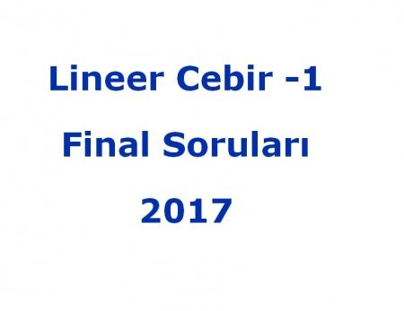 Lineer Cebir -1 Final Soruları - 2017