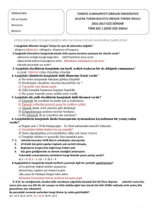 Türk Dili -1 Vize Soruları ve Cevapları